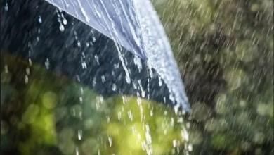 Photo of باران انډول او باران جوړښت| قرآن علمي اعجاز