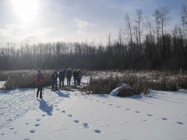 Blackfoot Staging Area