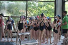 schwimmstar (5)