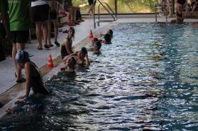 schwimmstar