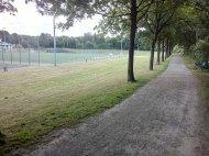 Monte: Allee am Fußballplatz