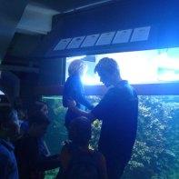 meeresmuseum-wasserwachtjugend-rostock-04