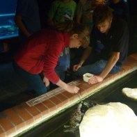 meeresmuseum-wasserwachtjugend-rostock-08