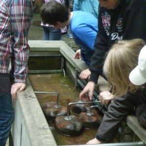 miniwasserlauf-wasserwachtjugend-rostock-05