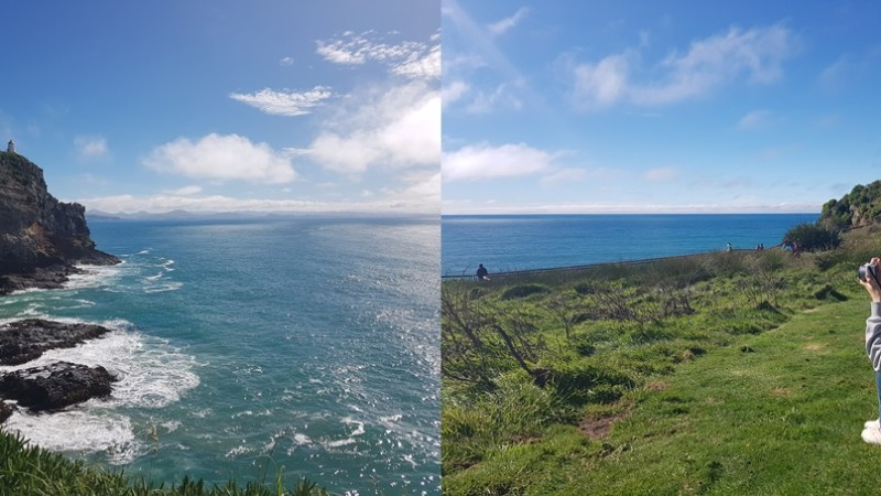 Travelling to the Dunedin(더니든) in New Zealand(뉴질랜드)