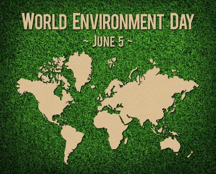 Celebrate World Environment Day 2020!
