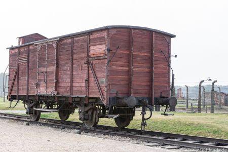 Auschwitz-12