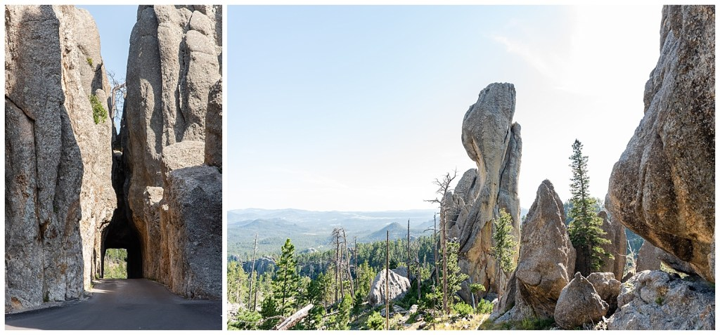 needles highway custer state park