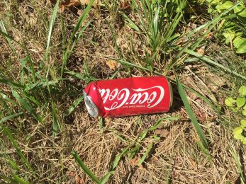 Notice how the litter is the unhealthy stuff?