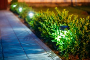 Using solar lights, beeswax or soy candles will give your party ambience and lighten the effect on the environment.