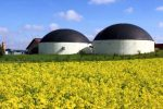 biogas-plant-view-540x360