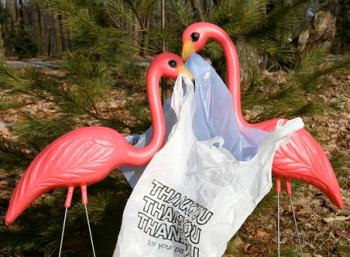 Palstic bag tax no. Flamingos yes!