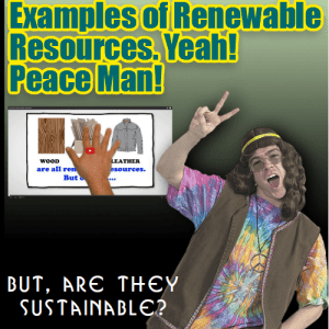 examples of renewable resources and sustainability
