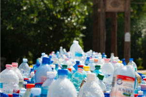 Featured image for article: A selection of plastic bottles.
