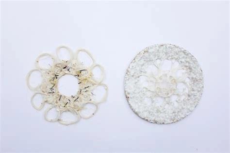 Mycelium textile