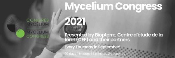 Mycelium Momentum; World is waking up.