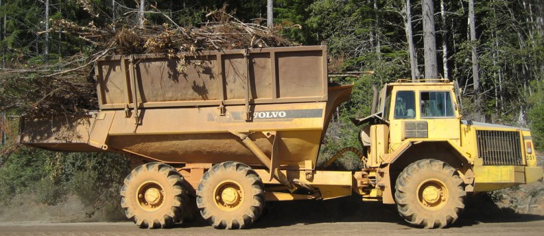 Centralized biomass feedstock operations supporting biomass conversion technologies
