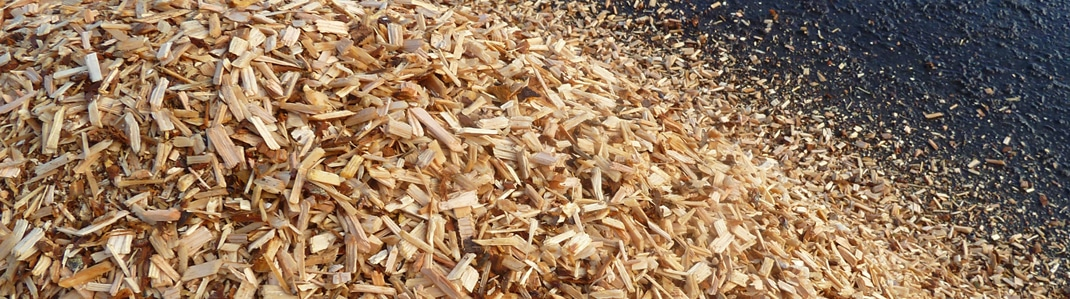 Webinar - Production of quality feedstock from forest residues for emerging biomass conversion technologies