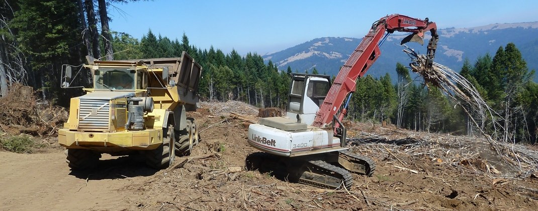 Waste to Wisdom webinar to highlight the evaluation of economic and environmental benefits of utilizing forest residues