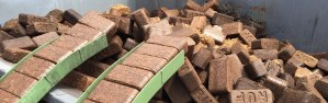 brdi-waste-to-wisdom_results-from-preliminary-biomass-briquetting