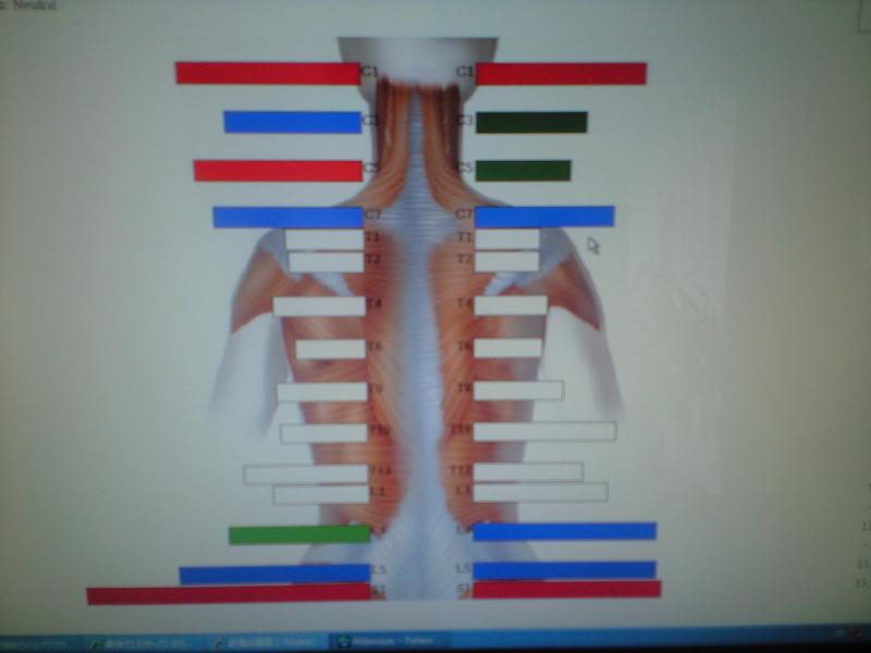 上部頚椎カイロプラクターの日々想うこと
