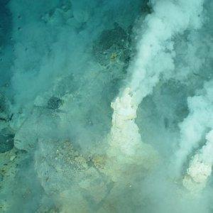 エジプトの砂漠はクジラ化石の宝庫!「クジラの谷」ワディ・アル・ヒタン