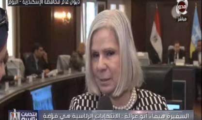 بعثة الجامعة العربية الانتخابات فرصة لإظهار حب المصريين