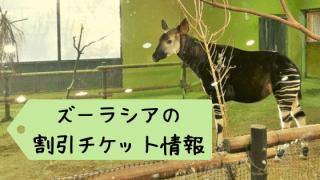 ズーラシアの割引クーポン 情報まとめ!よこはま動物園でお得に遊ぶ方法