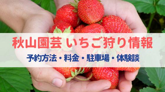 秋山園芸(福岡)のいちご狩りは予約が必要⁈料金・駐車場・口コミまとめ!