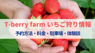 T-berry farm(滋賀)のいちご狩りは予約が必要⁈料金・駐車場・混雑状況・口コミ!