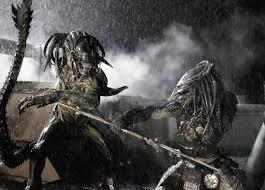 alien vs predator 24
