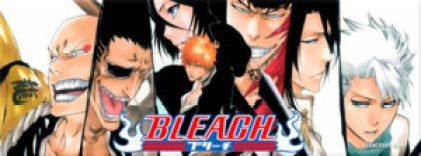 13477-bleach