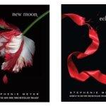 Stephenie Meyer új regényen dolgozik