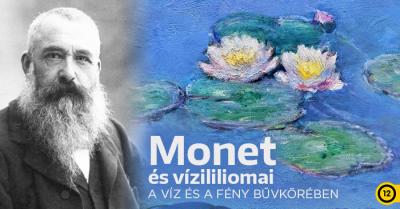 Monet és vízililiomai – Egy mestermű születése a mozikban