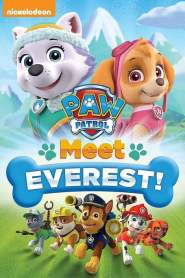 Paw Patrol: Meet Everest (2015)