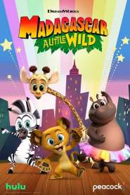 Madagascar: A Little Wild Season 1