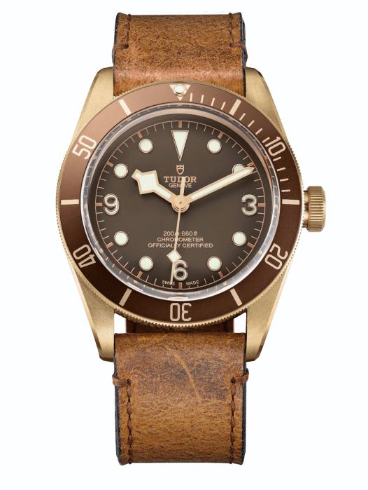 Tudor Black -Bay Bronze-1