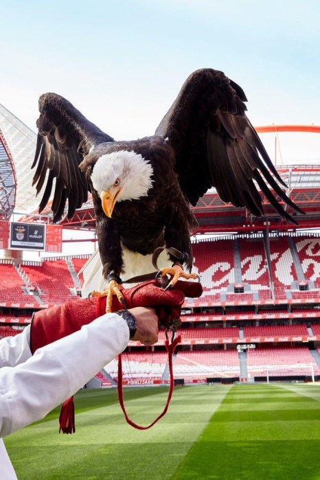 HUBLOT-Benfica-