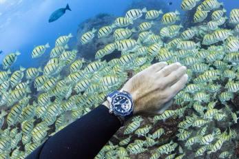 Ulysse-Nardin-Diver-Deep-Dive-Fred-Buyle-2