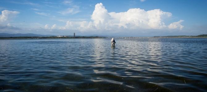 Sight Fishing Photo Gallery