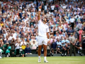 Novak wins Wimbledon