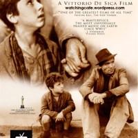 ShortFilm Project – Phim ngắn hiện thực