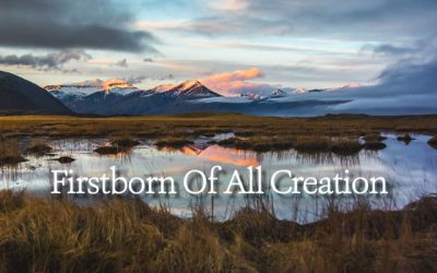 Firstborn of All Creation