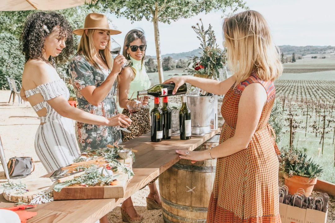 alexander valley wine experience