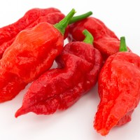 Top 5 Brutal Hot Sauces To Spice Up Your Cooking