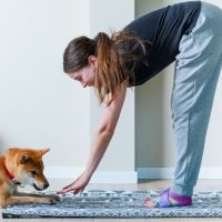 Top Workouts To Do With Your Dog