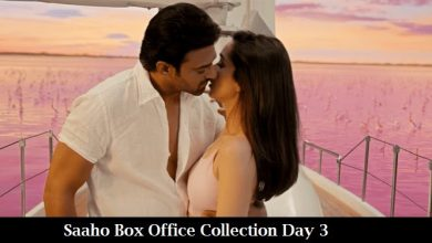 Photo of Saaho Box Office Collection Day 3