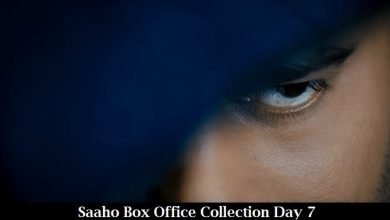 Photo of Saaho Box Office Collection Day 7