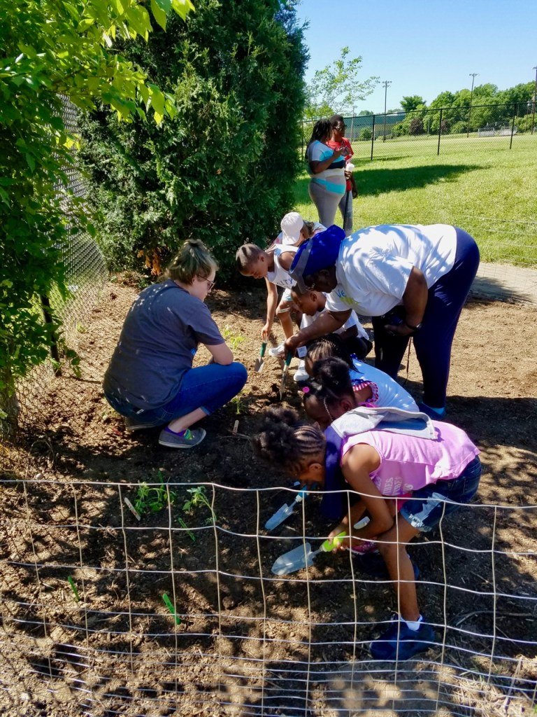 Miss Mary and volunteers with young children planting vegetables in community garden