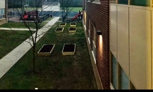 grassy area next to school building and six wooden garden beds filled with dirt